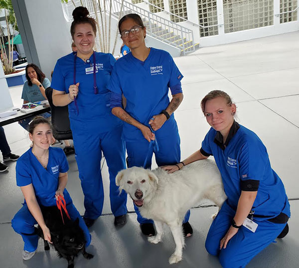 Pet Pantry Product at Cape Coral Tech